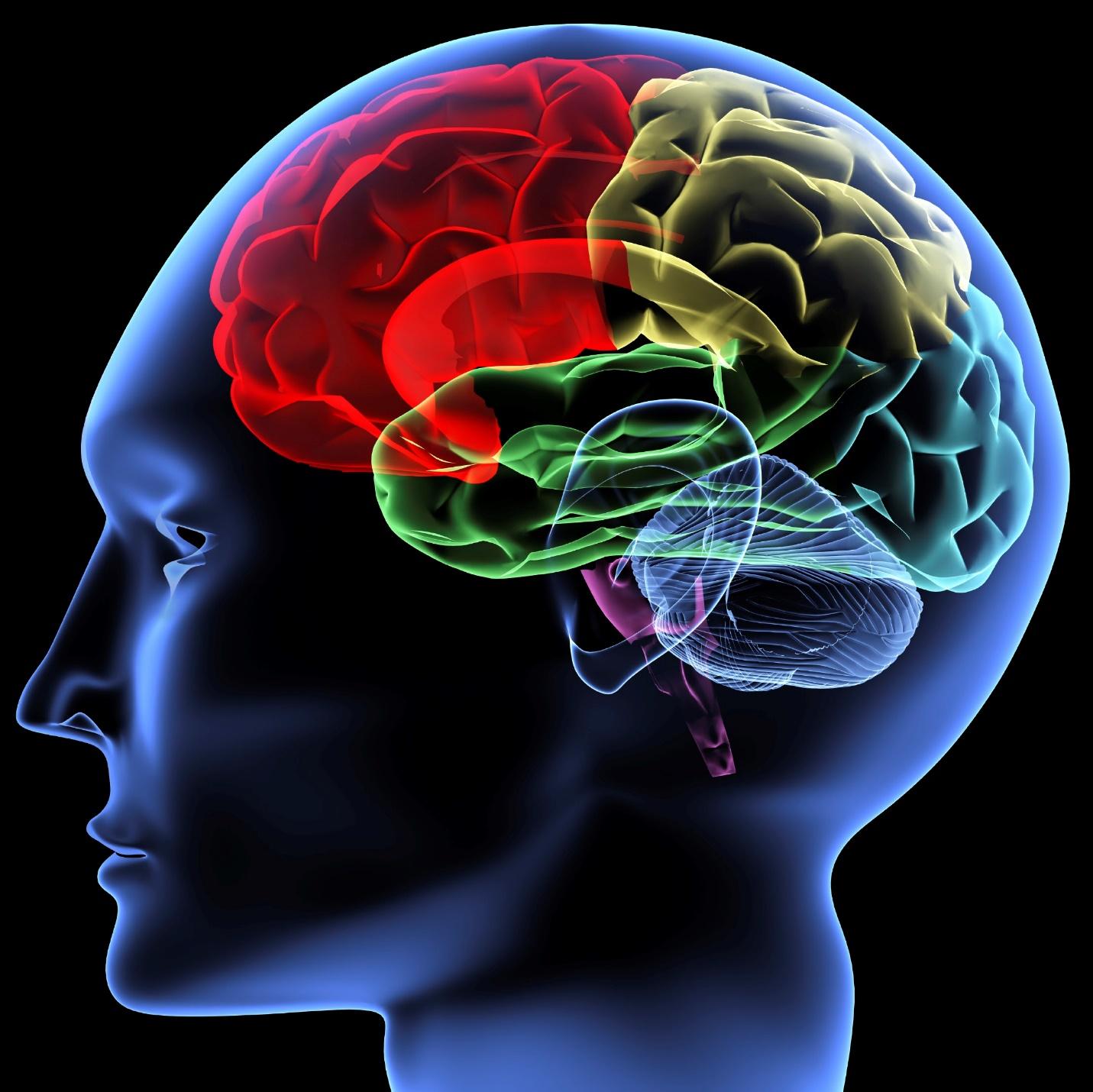 Arlington, Texas Brain Injury Attorneys
